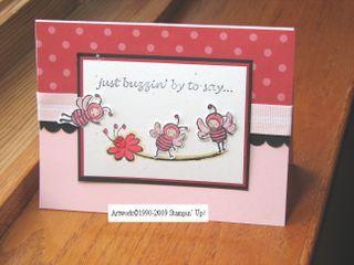 Kathleenh-pink bees