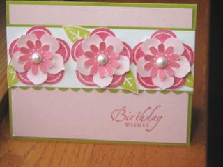 Kathleenh-pink petals