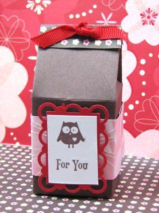 Kathleenh-owl mini milk carton