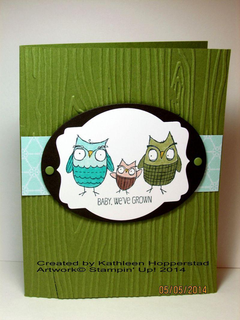 Kathleenh-owl family